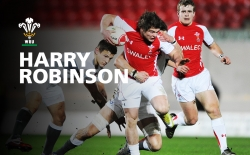Harry Robinson